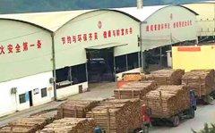 建筑模板厂家哪里多?广东地区的多吗?