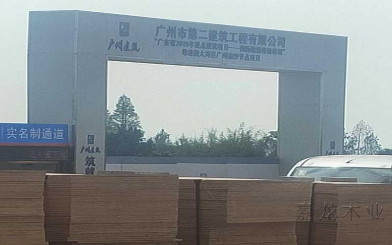 粤港澳大湾区广州南沙节点项目