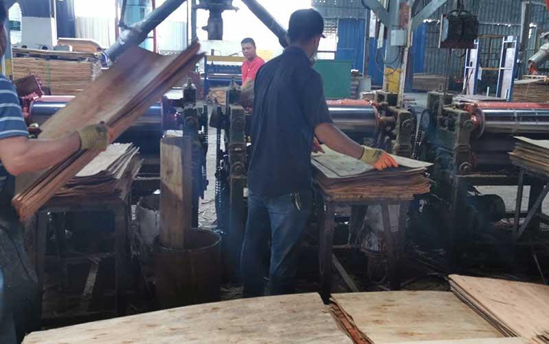 建筑模板原材-单板过胶基地