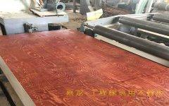 工程建筑用木模板