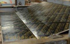 黑色建筑工程覆膜板