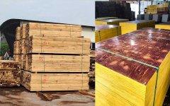 工地建筑模板和木方