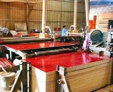 嘉龙建筑模板生产设备介绍